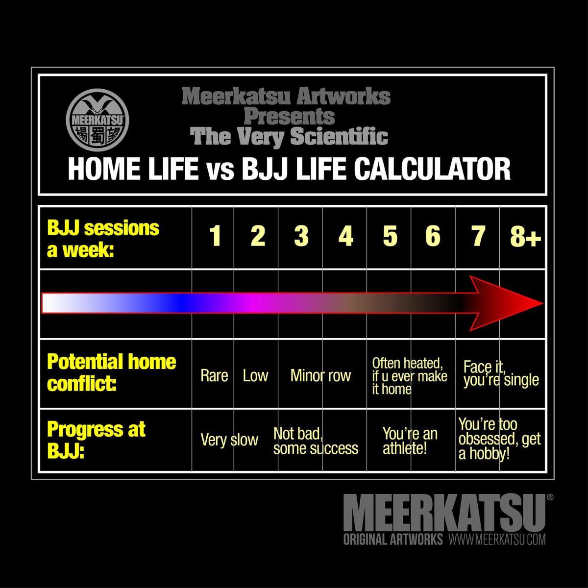 BJJ Progress vs Real Life