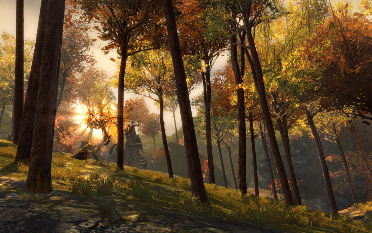 A tranquil forest scene from the game.