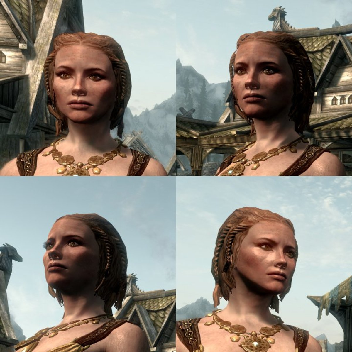This character uses navetsea's Female Face Retexture. I find navetsea's works well for wrinkles, but is overkill for Nords (who have no wrinkles to speak of).
