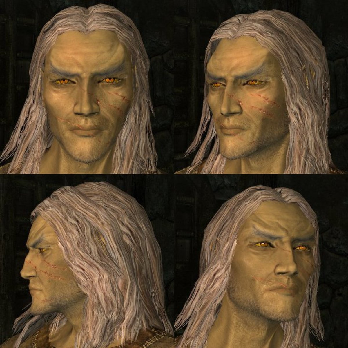 Some races have features that are difficult to modify. Male High Elves, for example, have pronounced chins and eyebrows. In cases like these, you have to build your character around existing limitations.