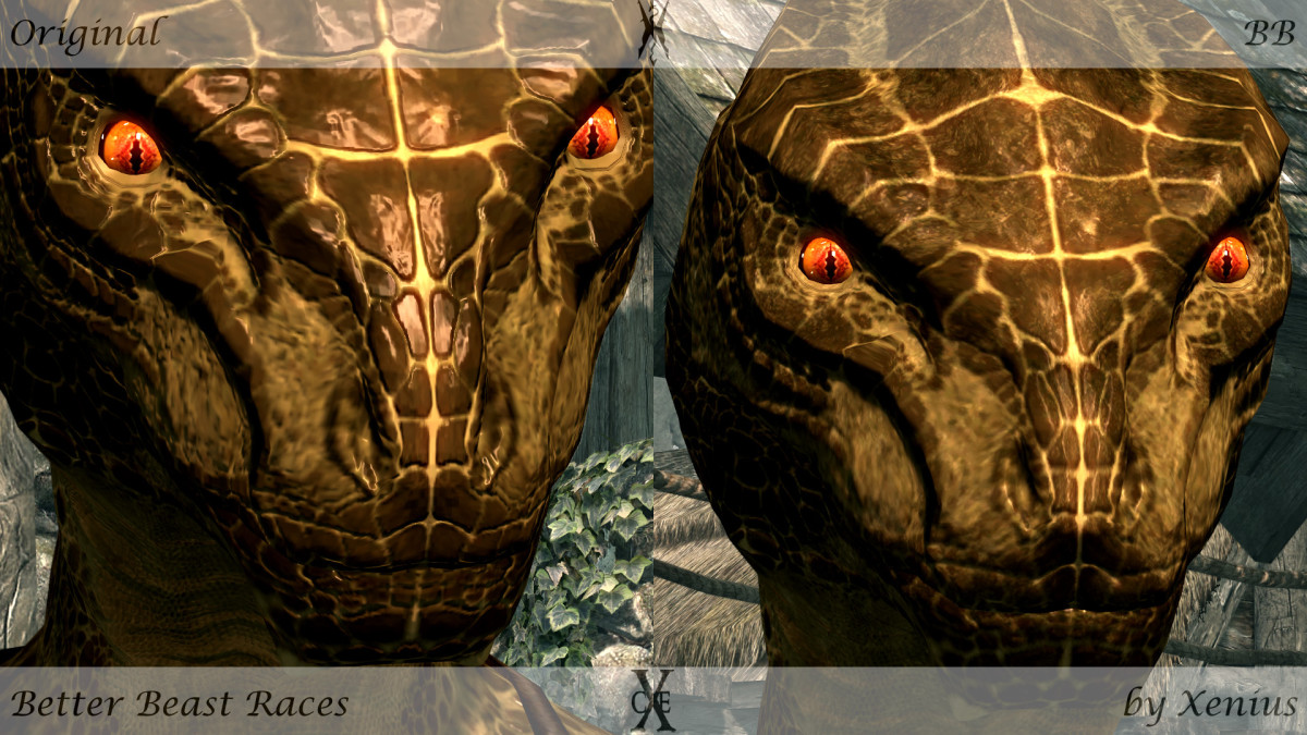 Better Beasts, a Skyrim mod, improves the shape of the beast races faces, making them less angular.