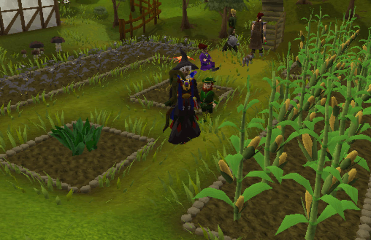 Some lovely farming patches.