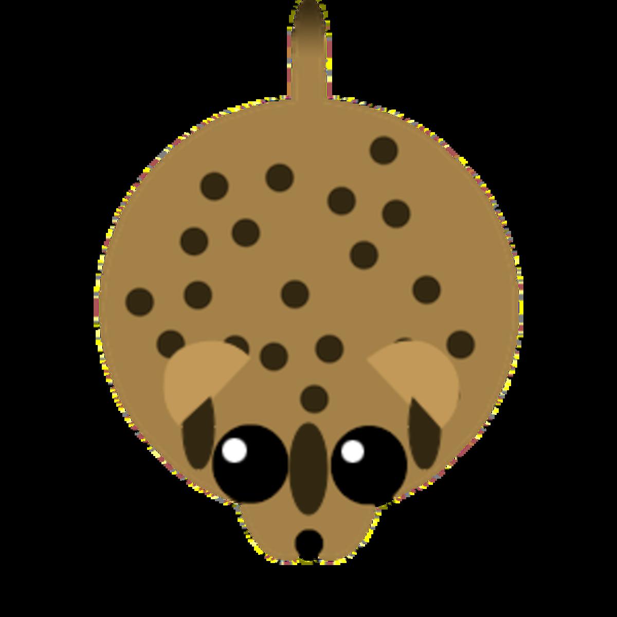 Ocelot