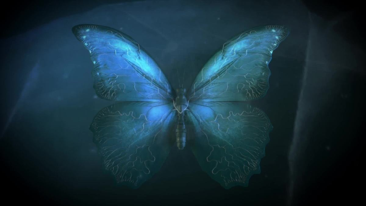 The Butterfly Effect plays a central role.