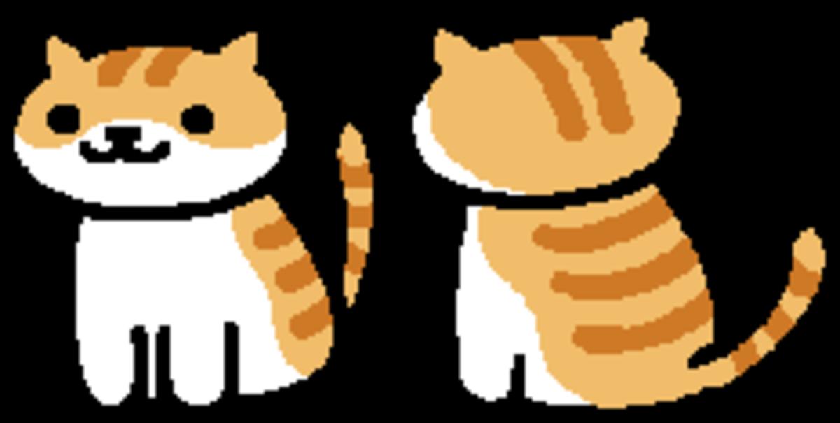 Neko Atsume: Character Profile - Pumpkin