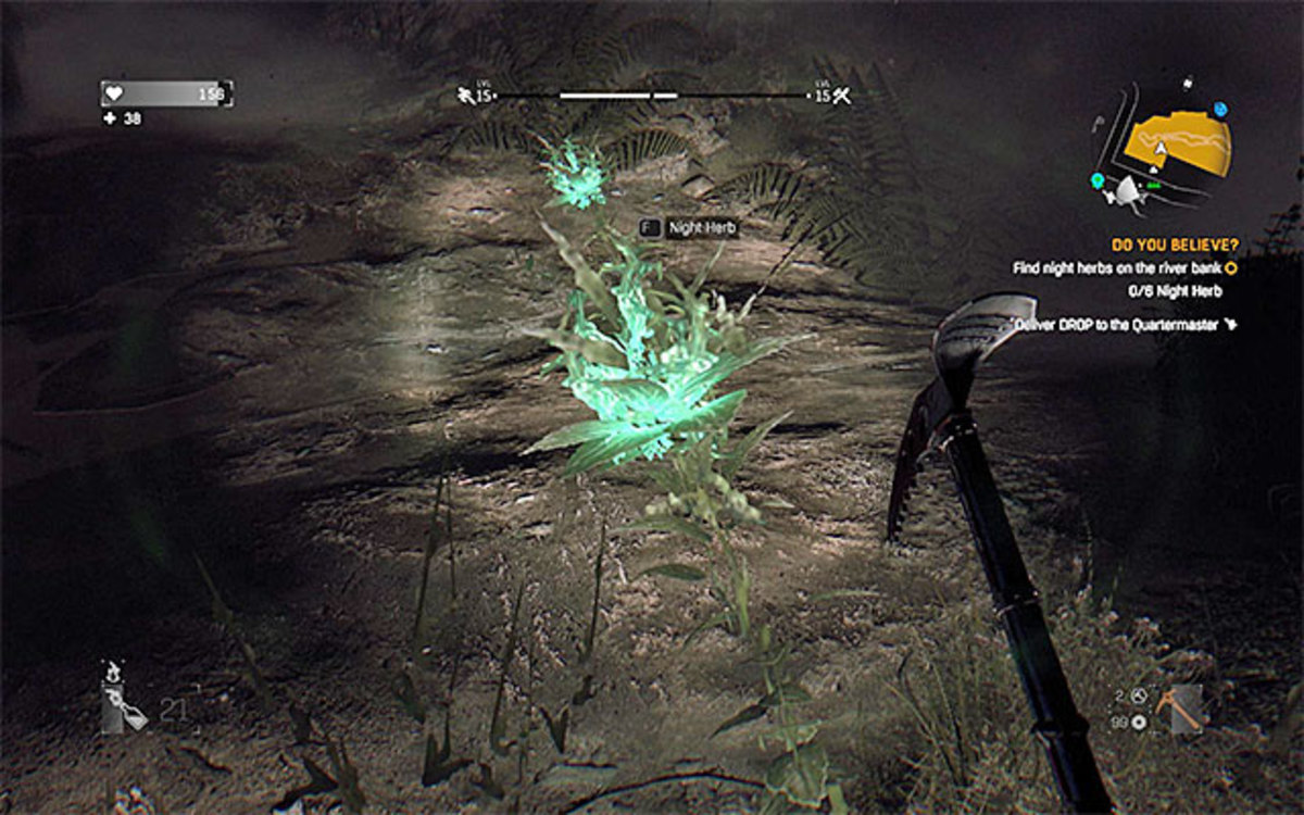 The night herb is easily visible glowing in the ground.