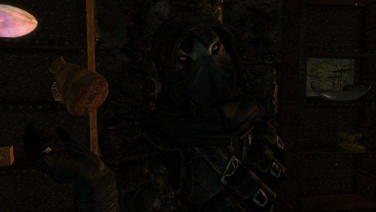 My most recent khajiit thief.