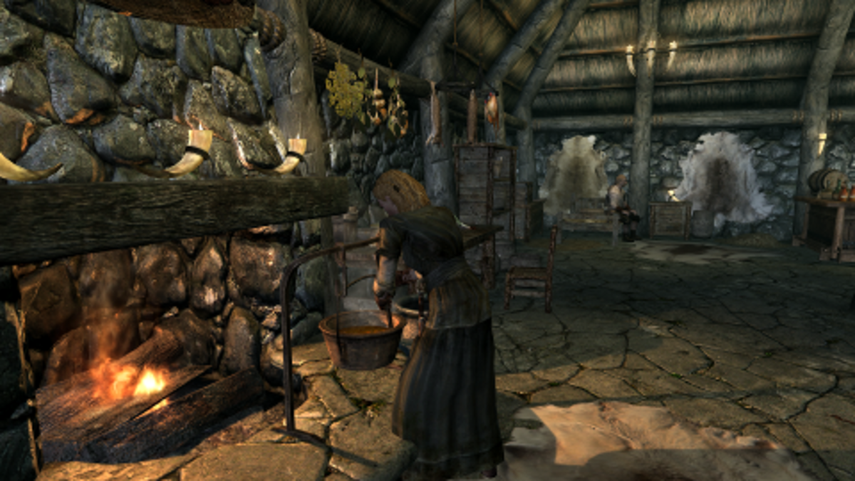 """""""Skyrim"""" gives you plenty of tools to spice up your role-playing experience."""
