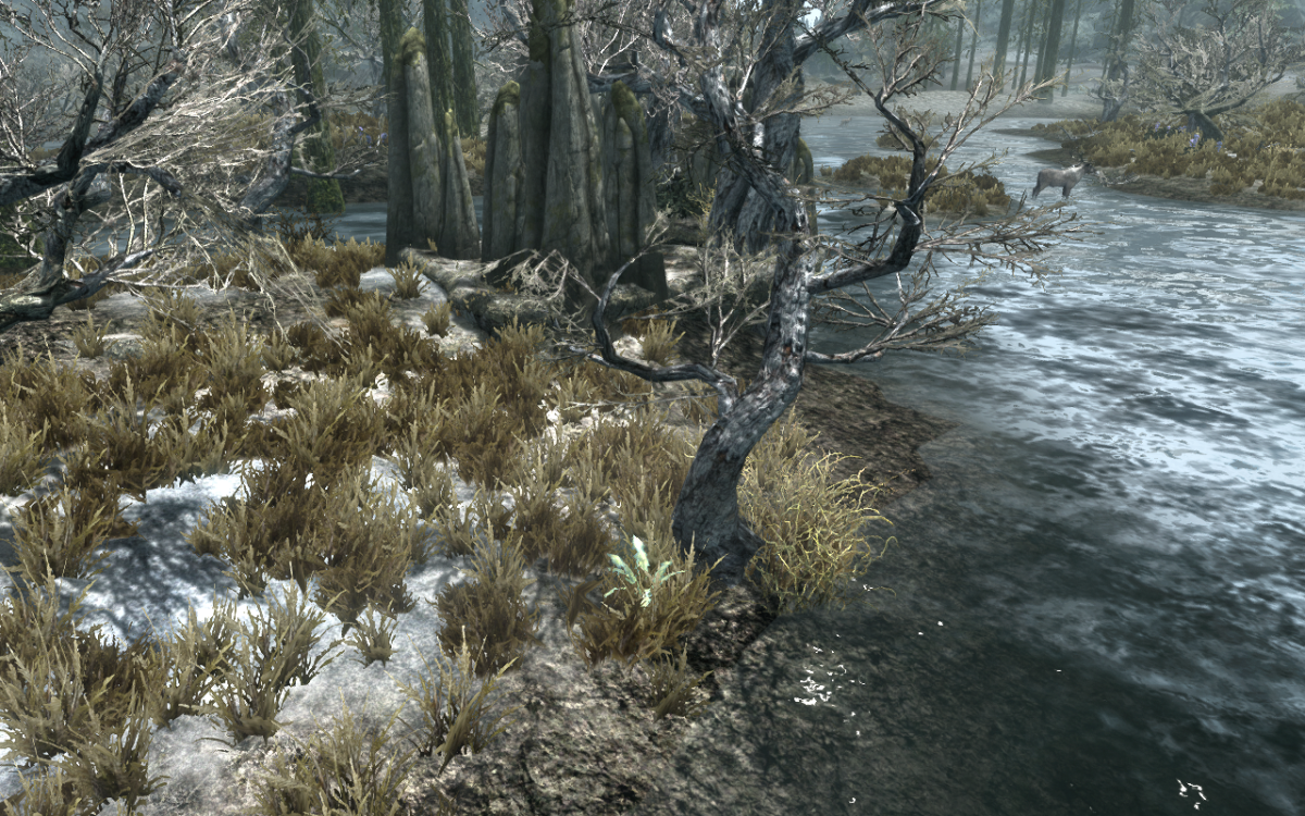The Nirnroot plant found at the base of the stone nearby a tree.