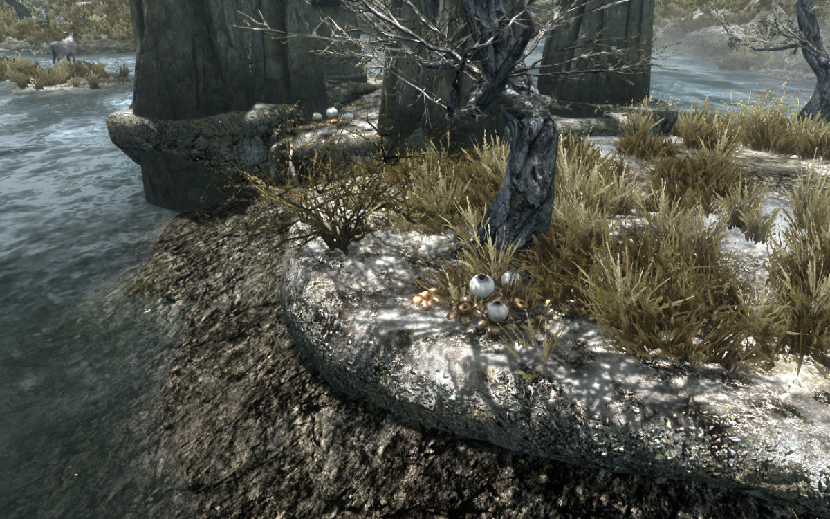 Swamp Fungal Pods found at the base of the Apprentice Stone.