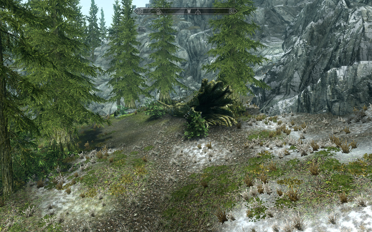 The Elder Scrolls V: Skyrim\