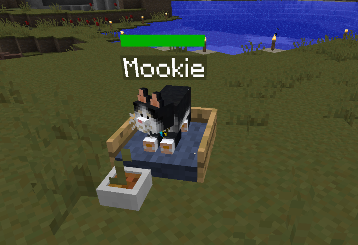 A Minecraft cat eating pet food from its cat bed.