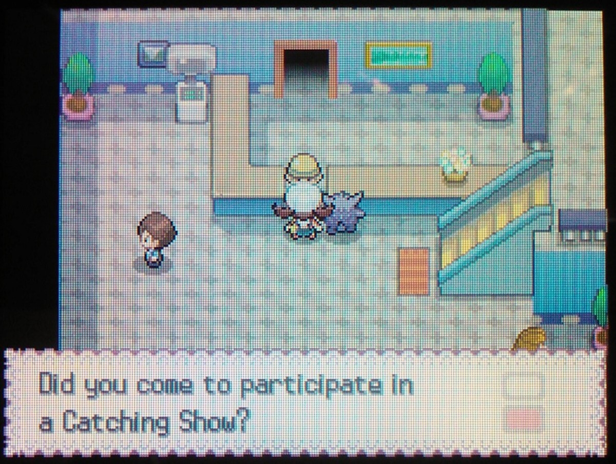 "Pal Park allows players to participate in a ""catching show"" of transferred Pokémon."