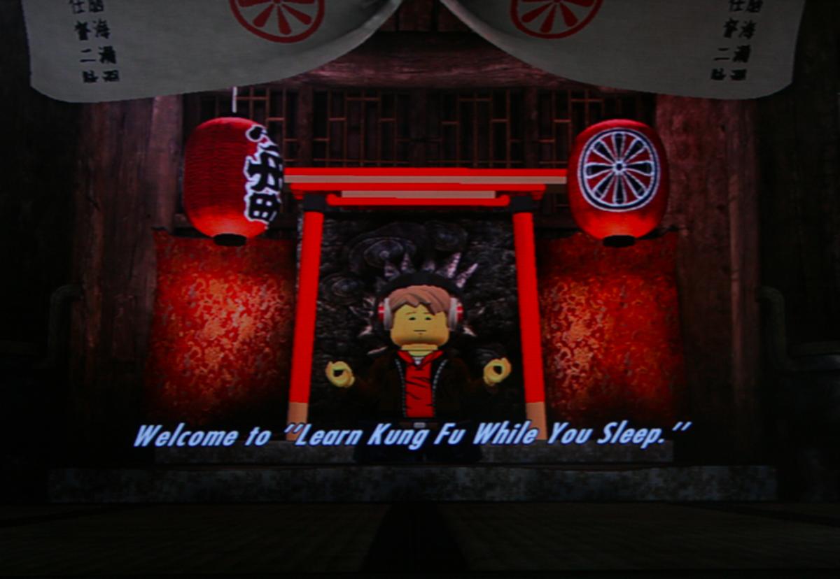 "Welcome to ""Learn Kung Foo While You Sleep"""