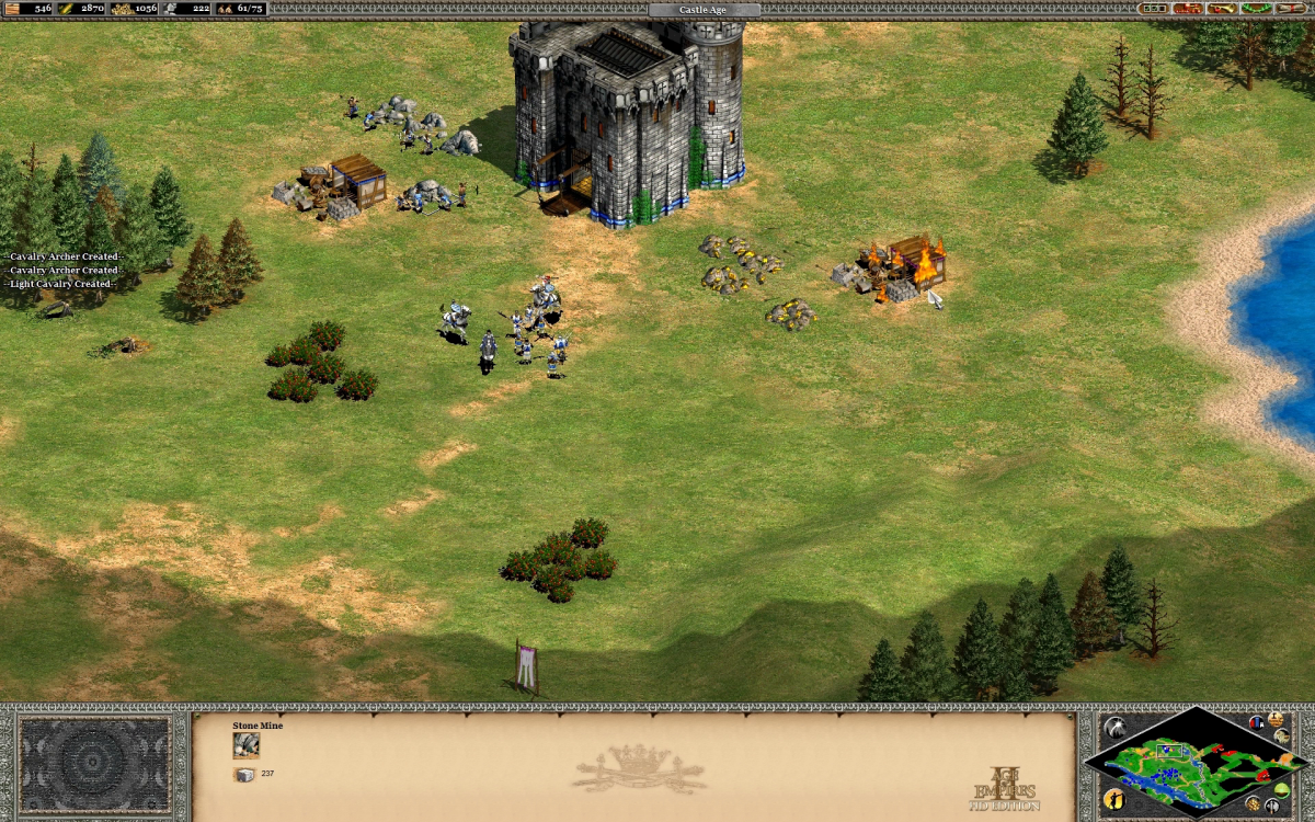 Using a castle to protect a valuable resource spot and tie up enemy units elsewhere.