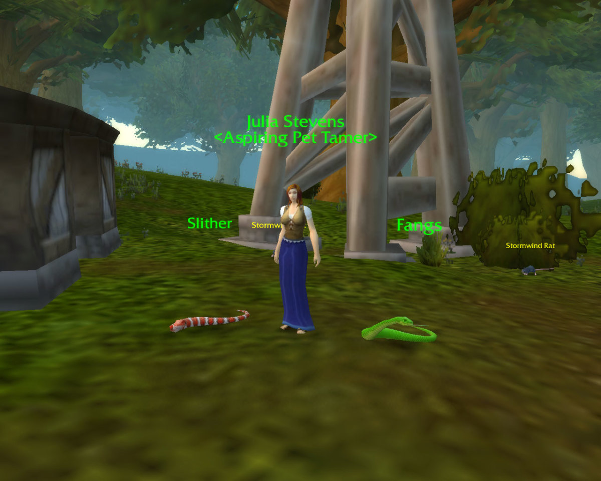 How To Win Pet Battles In World Of Warcraft Levelskip Video Games