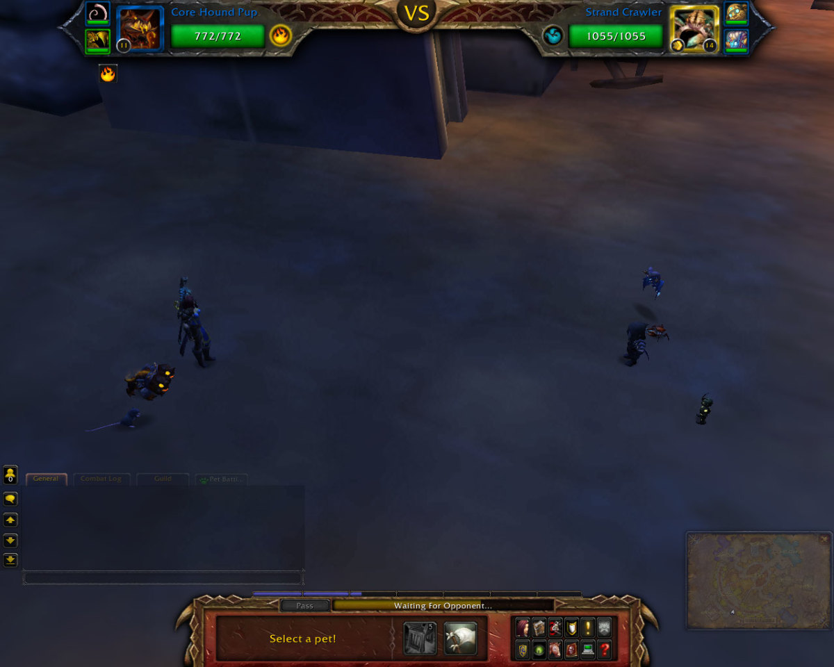 PVP Pet Battles are completely anonymous aside from the pets that battle.