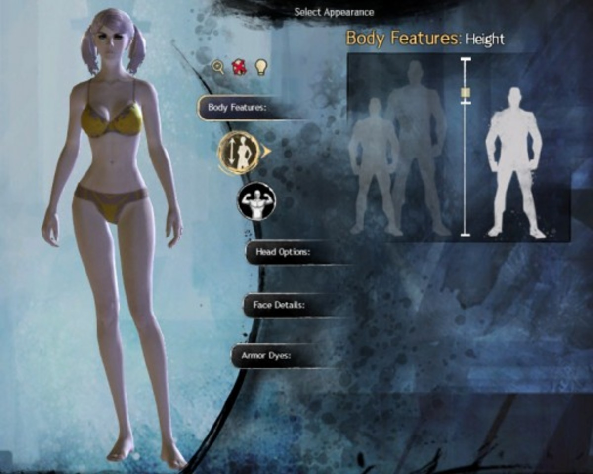 """""""GW2"""" offers more customization options."""