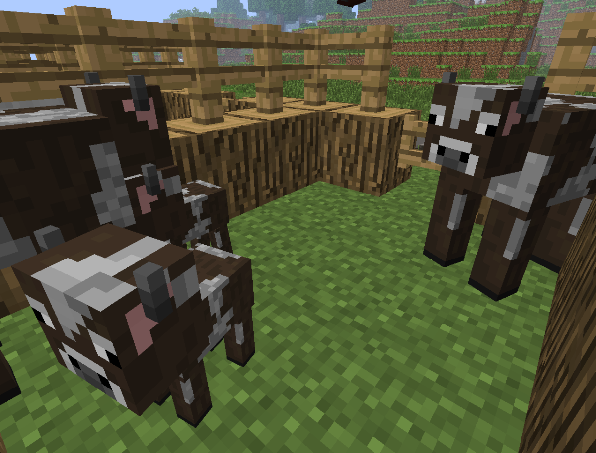 Cows are a great source of food, leather for armor and milk for recipes.