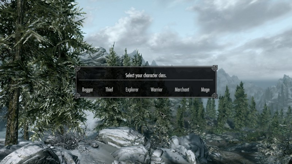 Select your character class to determine your starting equipment in Skyrim.