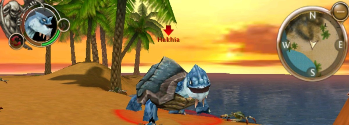 Hakhia, epic turtle for Order and Chaos achievement.
