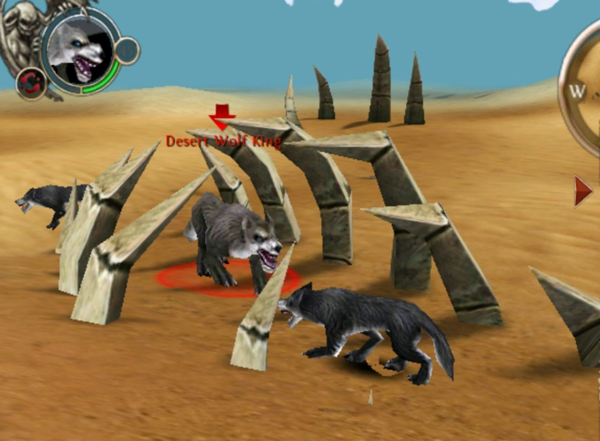The Desert Wolf King Picture was taken in the far south.