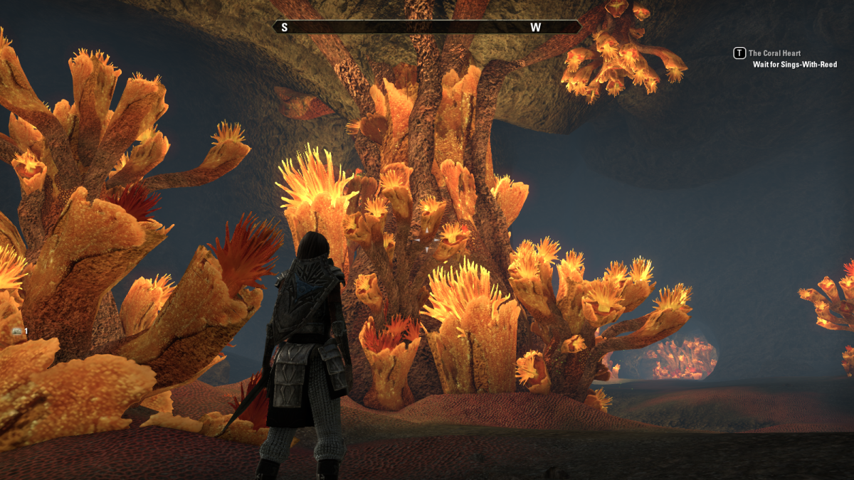 The Coral Heart, a massive, living organism that's central to the quest of the same name in The Elder Scrolls Online.