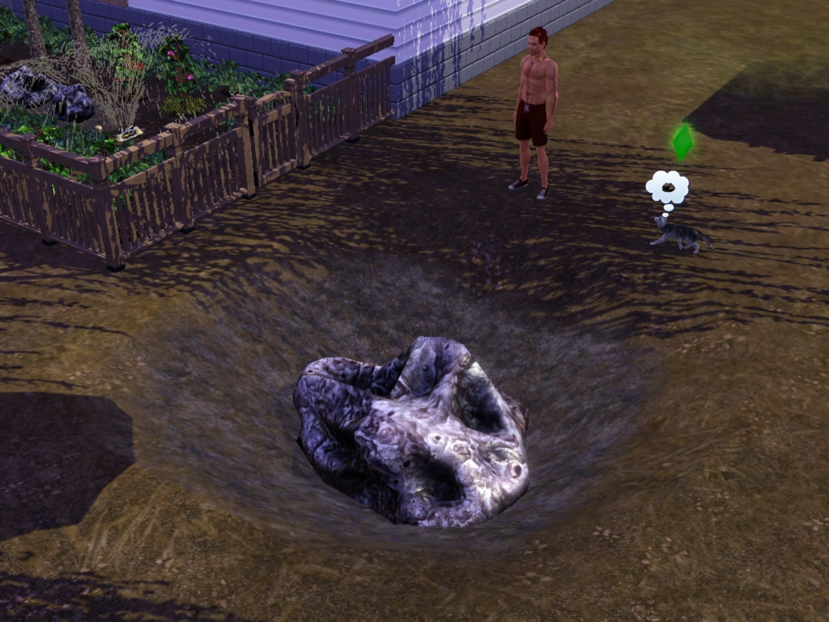 Put your Sims in the garden, and they might get crushed by a meteorite. Yikes.