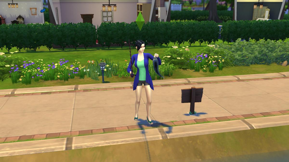 The sims 4 walkthrough fishing guide for Sims 4 fishing