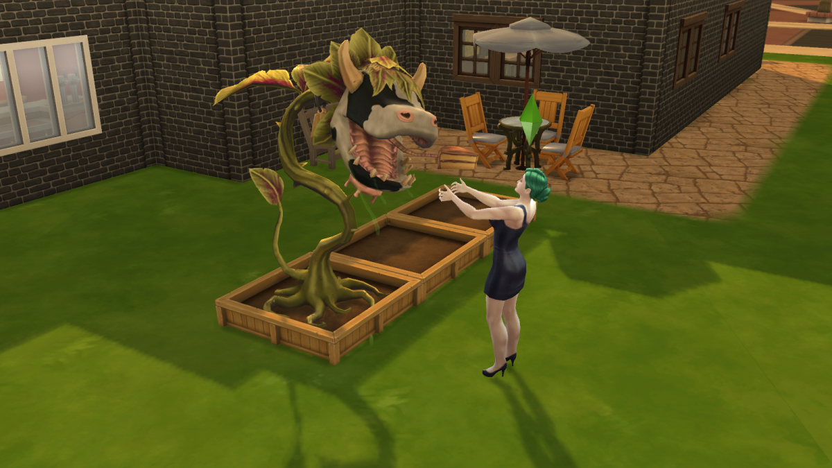 A sim about to be eaten by a cowplant in The Sims 4. The cake is a lie.