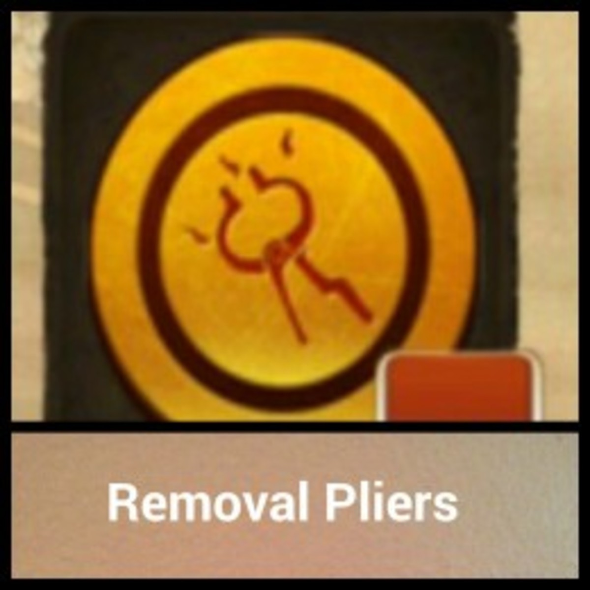 Removal Pliers Order and Chaos.