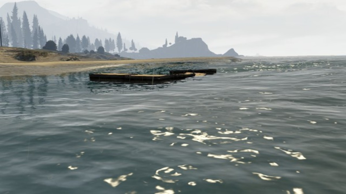 Water logged seashark dock.