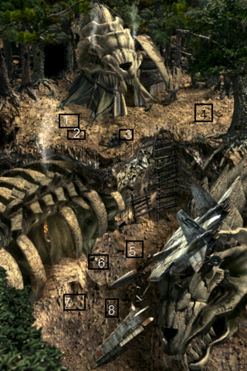 Map of dig locations for Bone Village.