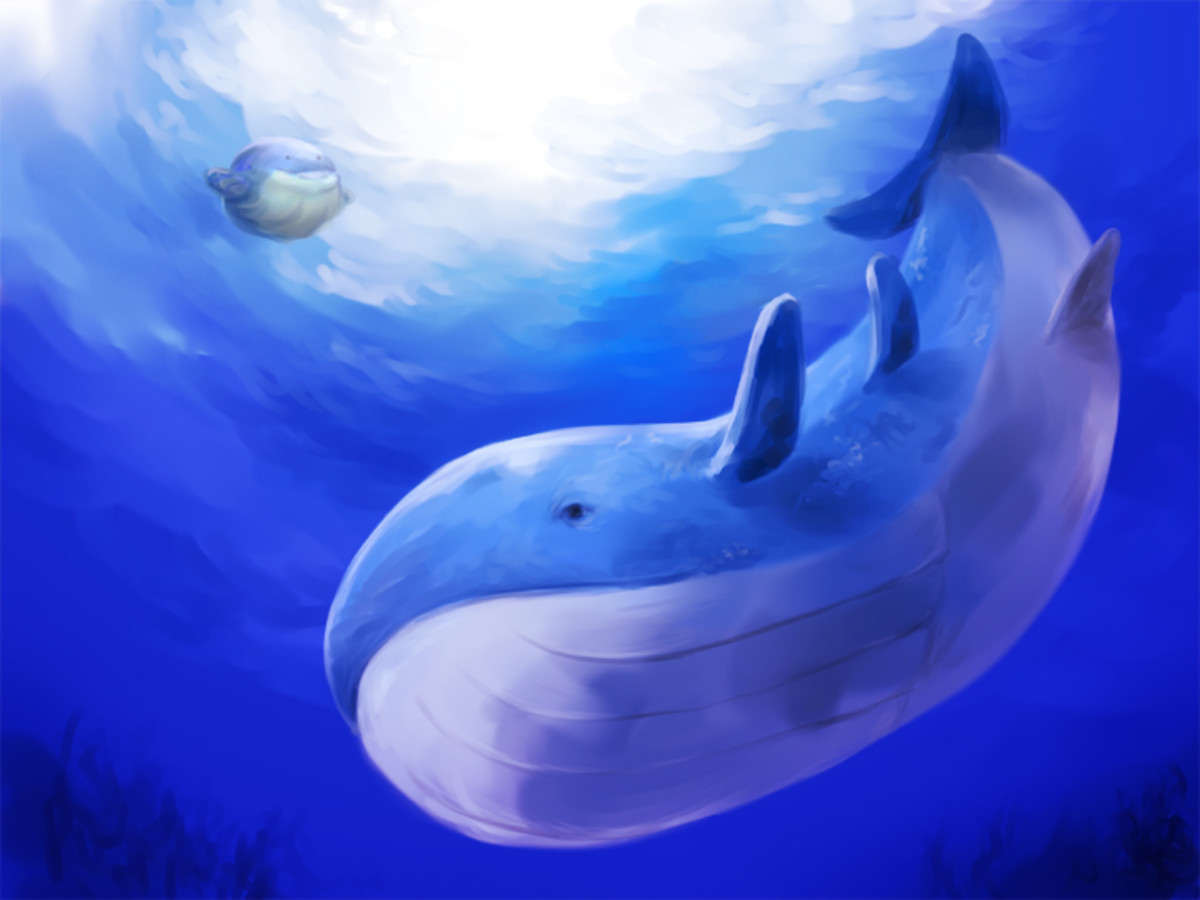Wailord (right) and prior evolution Wailmer (left)