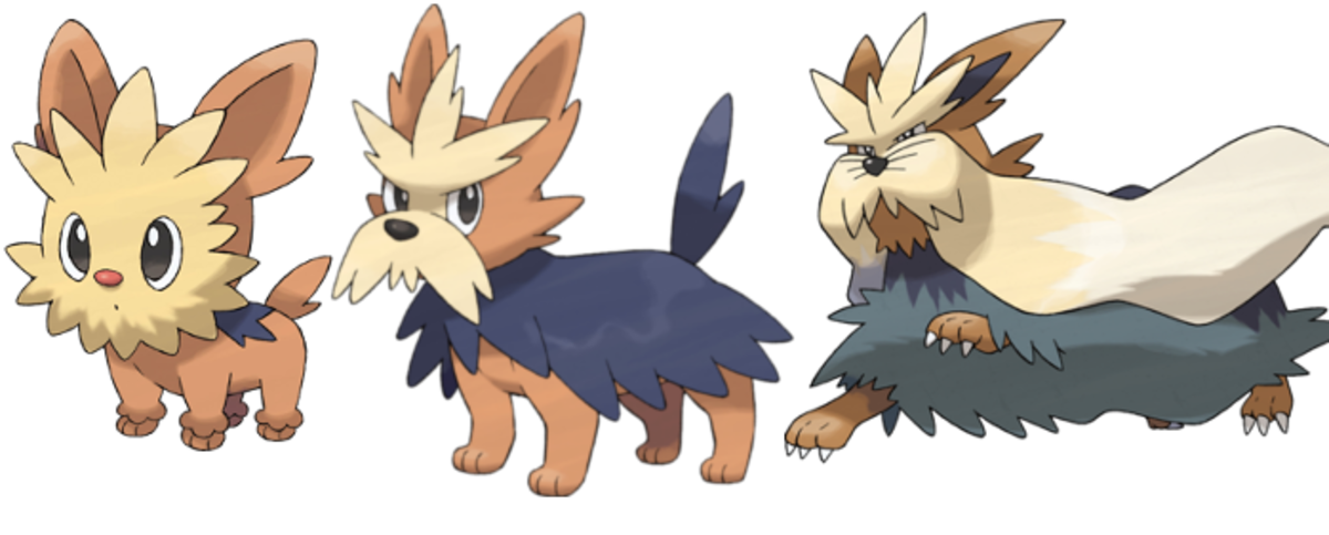 Dogs Of The Pokémon Series Levelskip