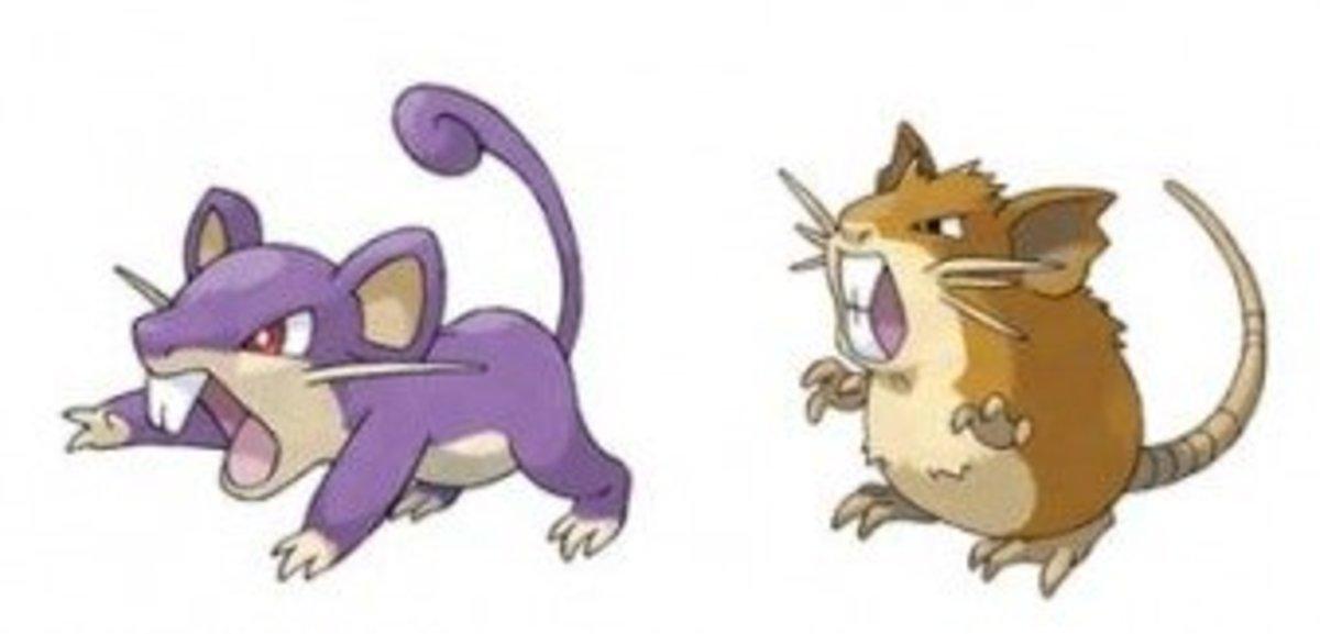 Rattata and Raticate