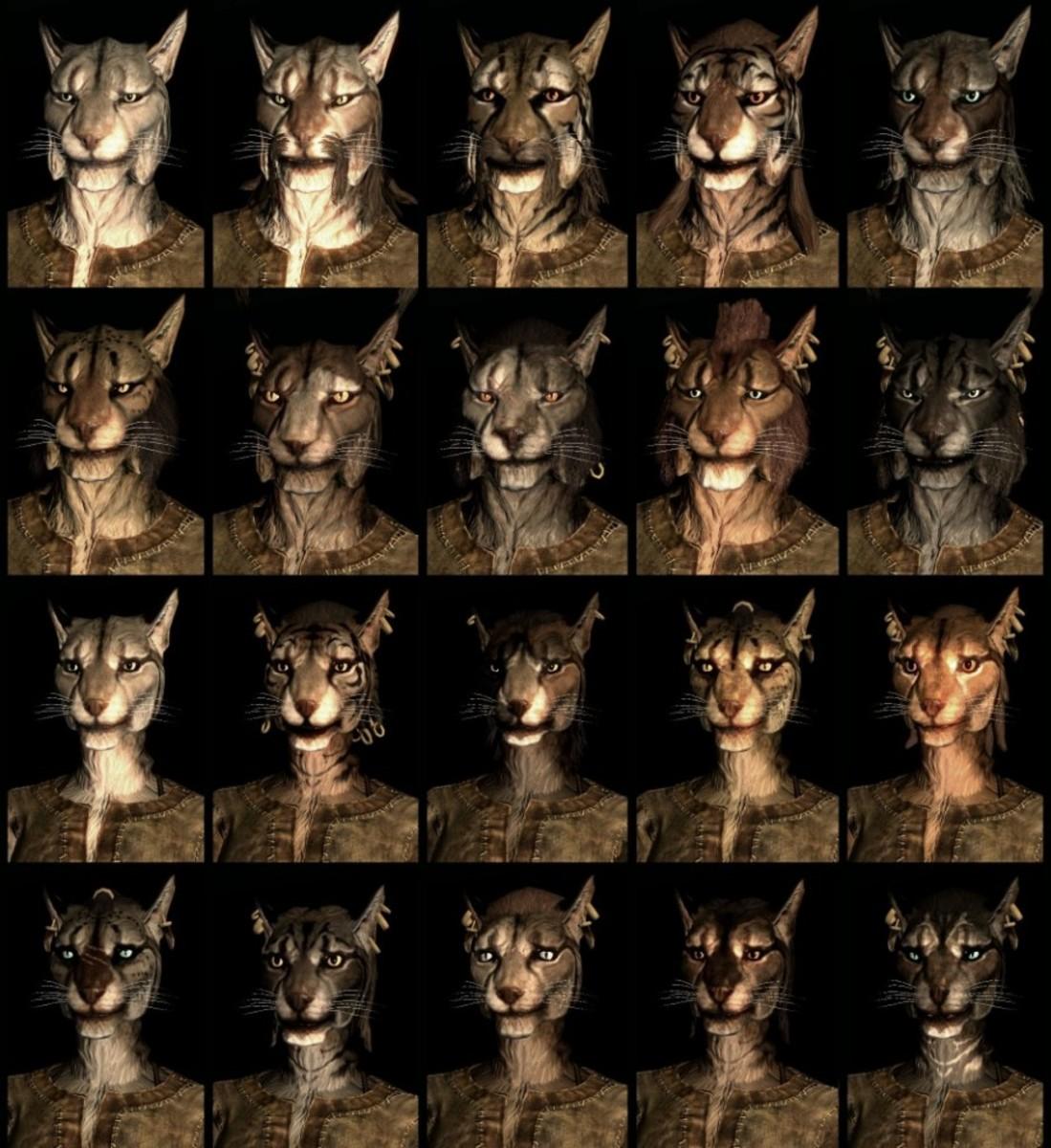 Compilation of Skyrim Khajiit faces