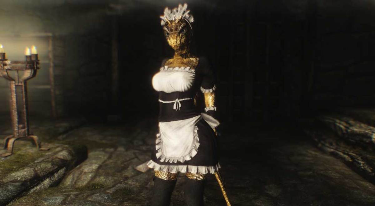The Lusty Argonian Maid is among the most popular Skyrim books. There are even mods for it!