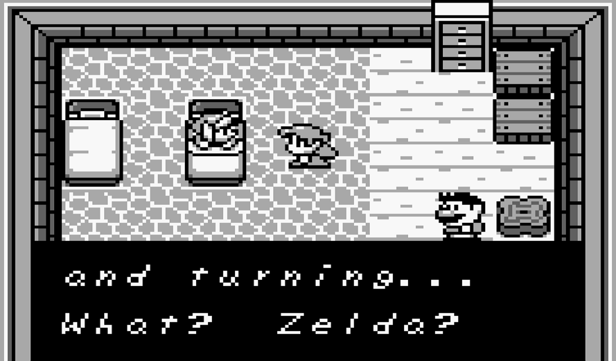 The ONLY reference to Zelda in Link's Awakening