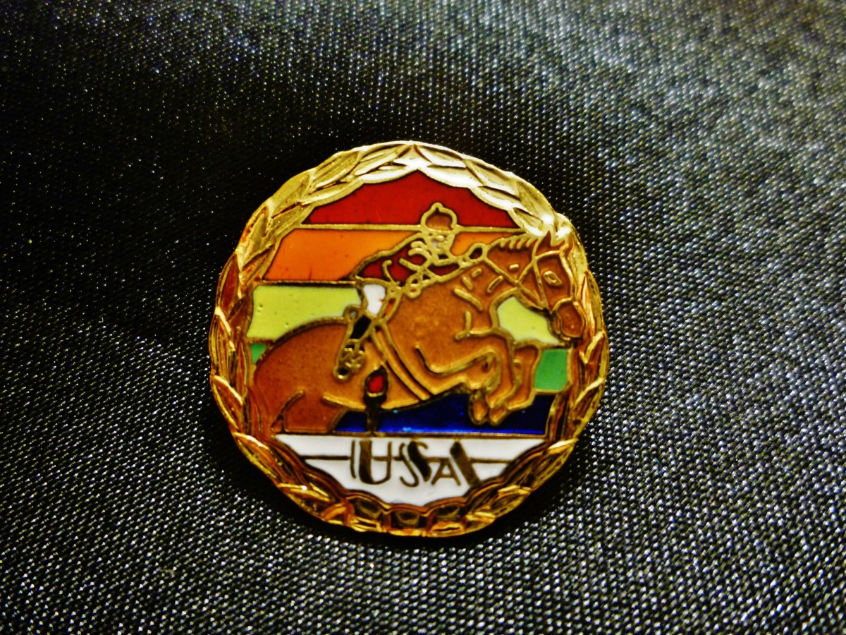 Olympic sports pin