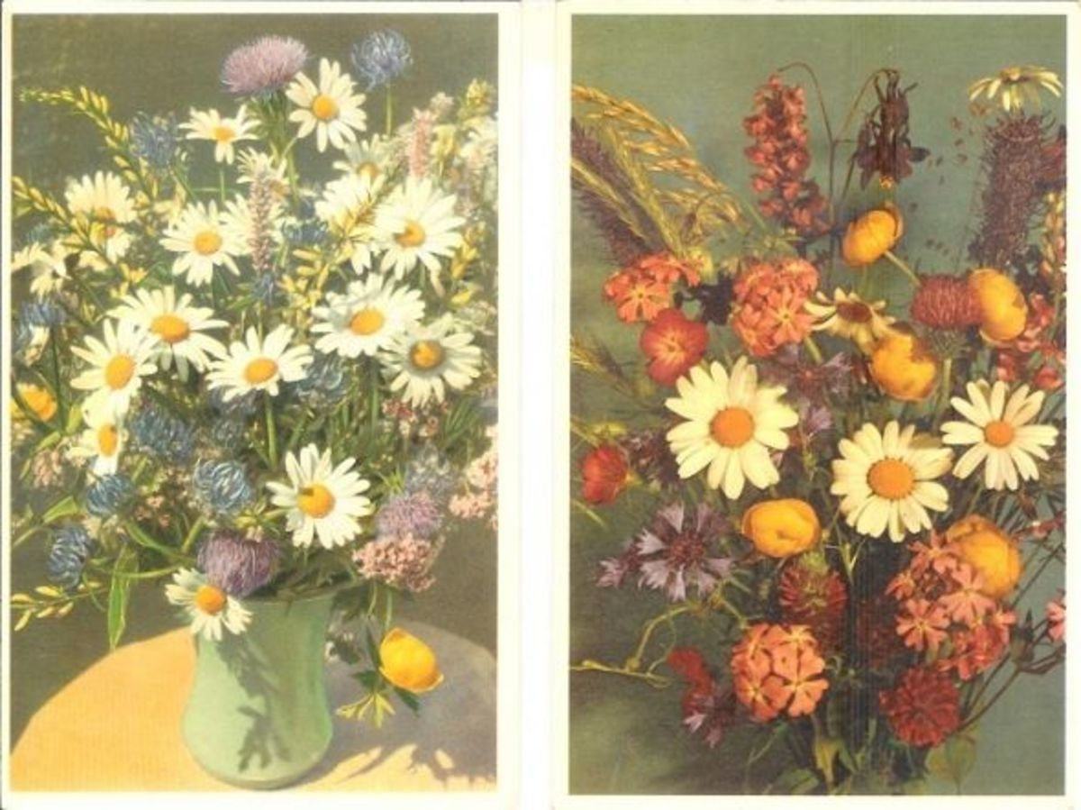 Field Flowers and Fieldflowers