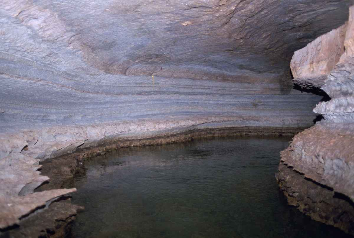 Interior springs within a cave. By Hollingsworth John and Karen, U.S. Fish and Wildlife Service [Public domain], via Wikimedia Commons