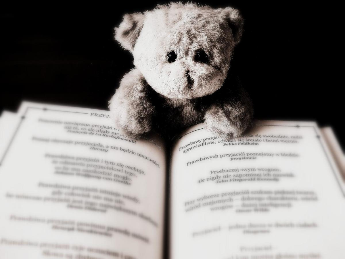 A toy bear reading a book.