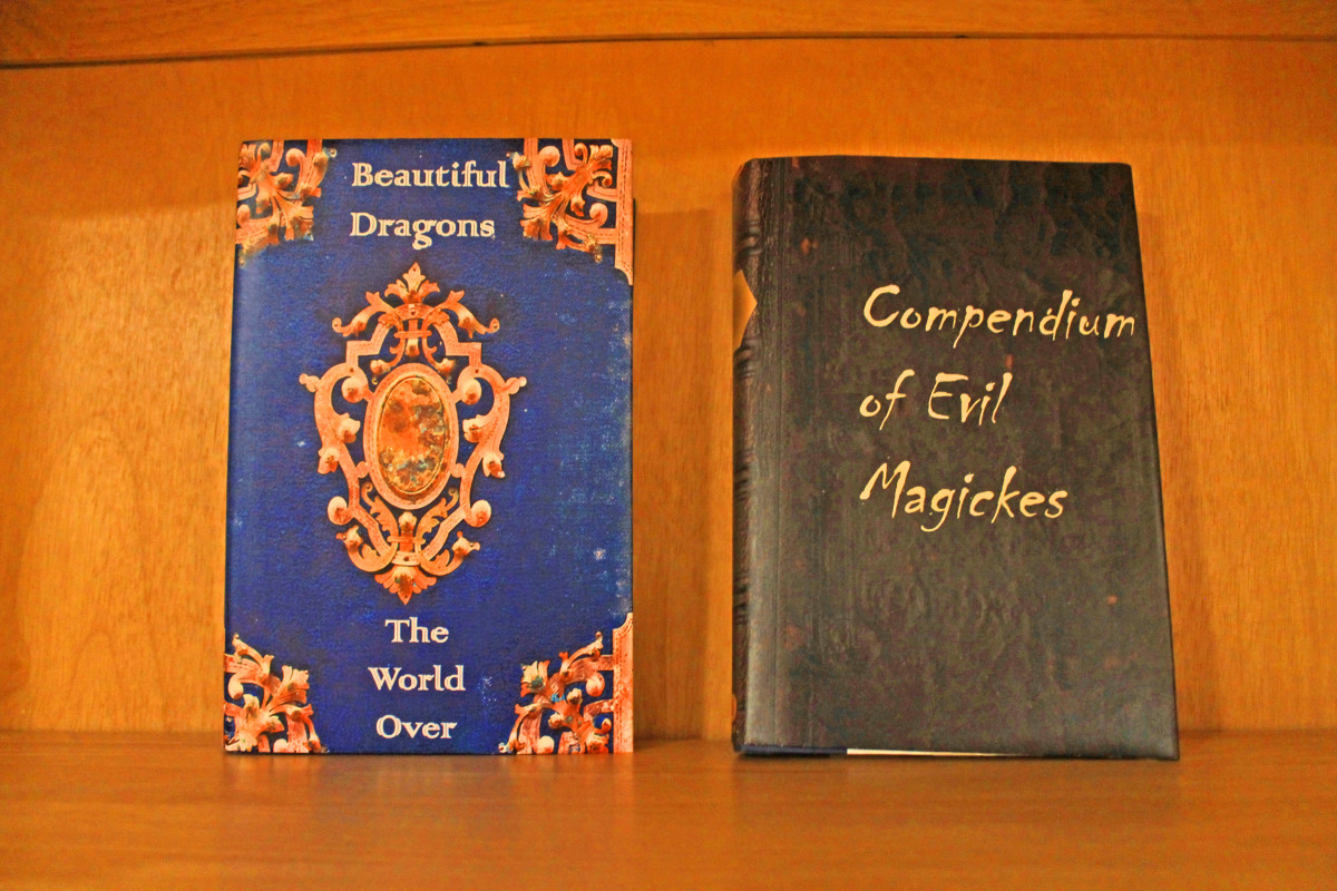 Books with wizard-themed book covers displayed on bookshelf