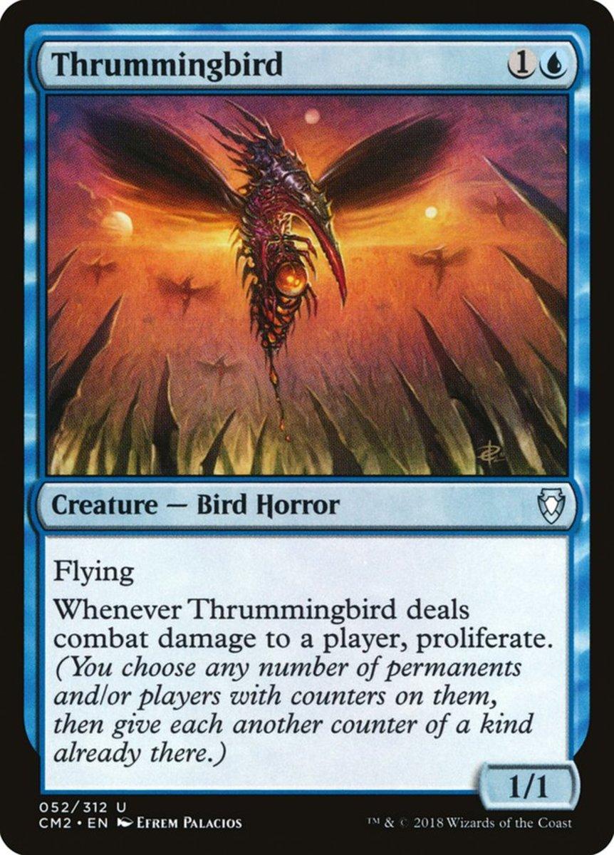 Thrummingbird mtg