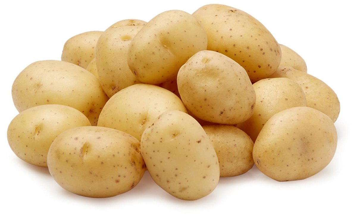 In 1981, Yukon Gold potatoes were introduced.