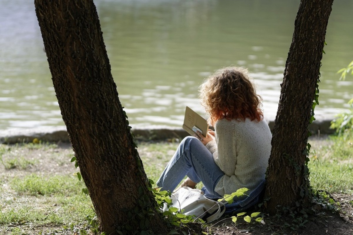 Relax with a good book; good writers are avid readers.