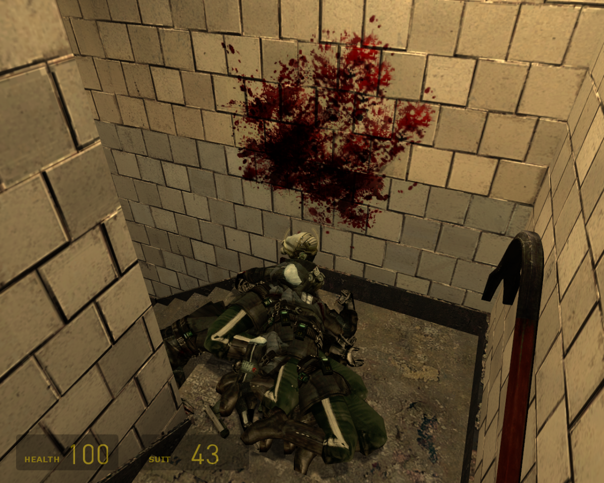 Yes, that is Half-Life 2.