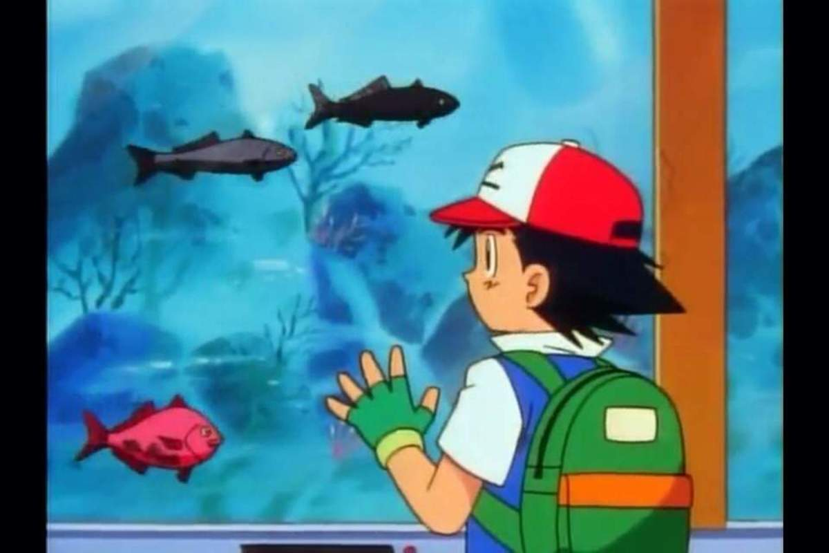 Regular fish in Pokemon