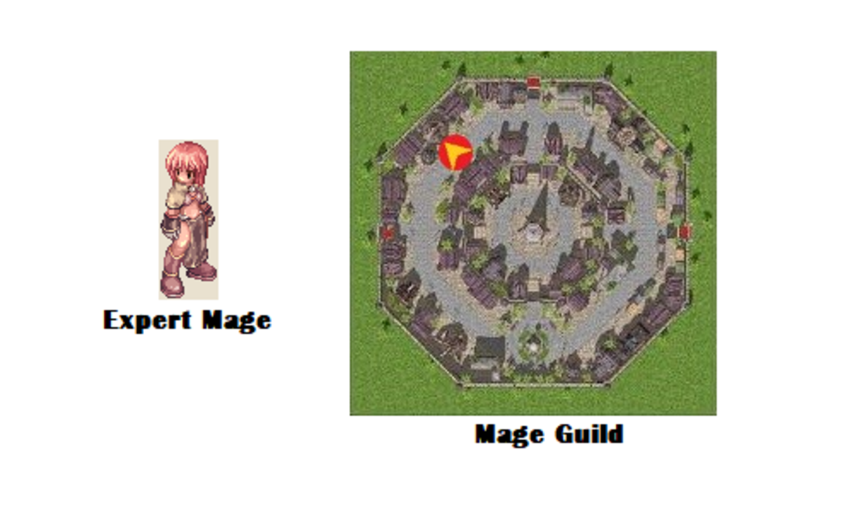 Return to the Expert Mage to be admitted to the Guild!